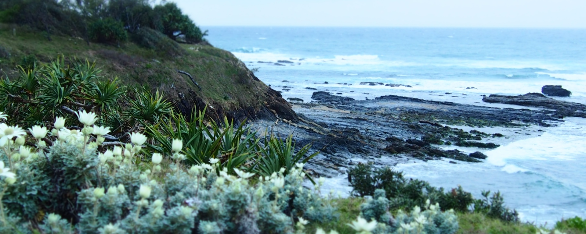 Beach and rock pools right in front of the house, Minnie Water